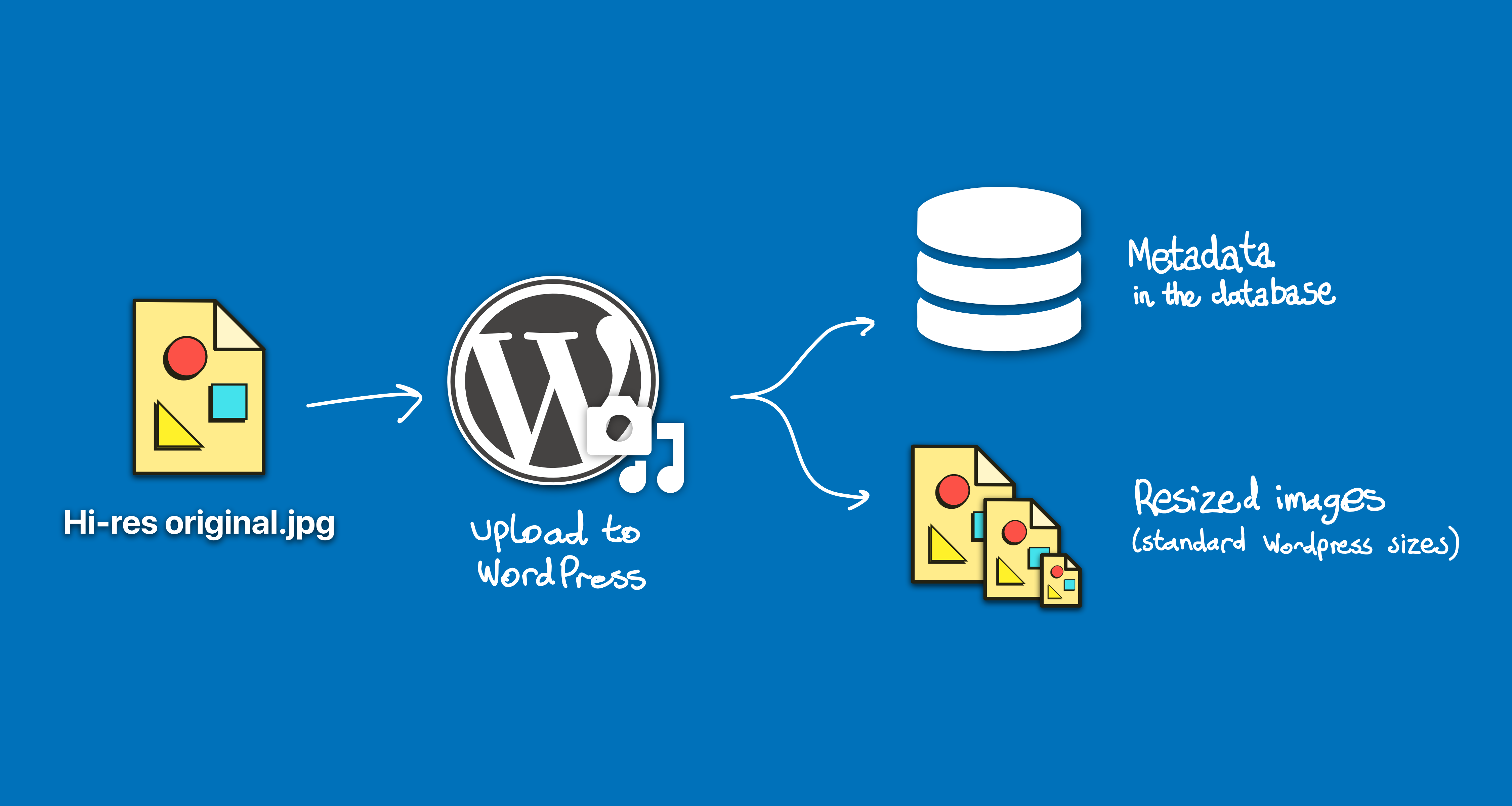 Responsive Images in WordPress with Cloudinary, Part 2 - All Pro Web